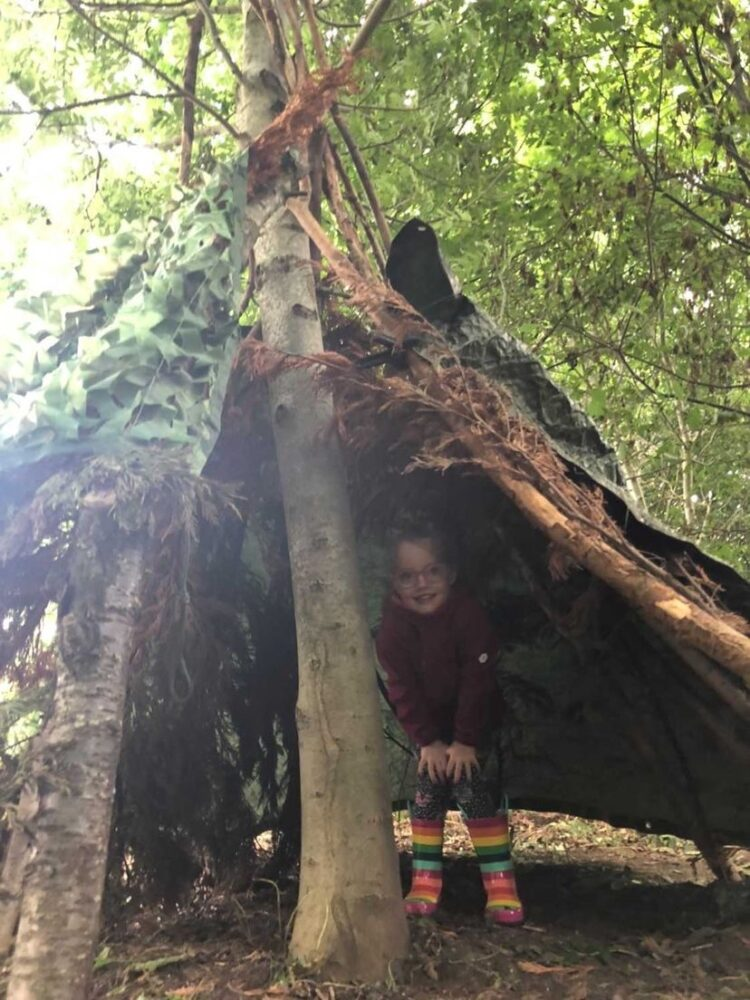 Wild in the Woods